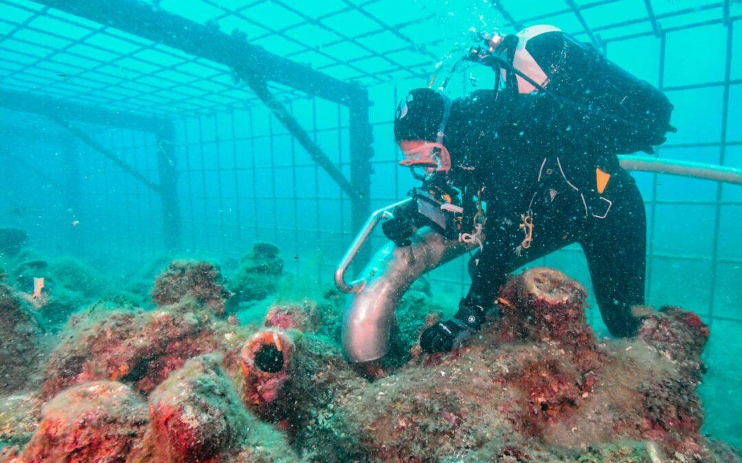 Dubrovačko-neretvanska županija: BLUEMED – Virtualni muzej arheološkog blaga u podmorju Cavtata