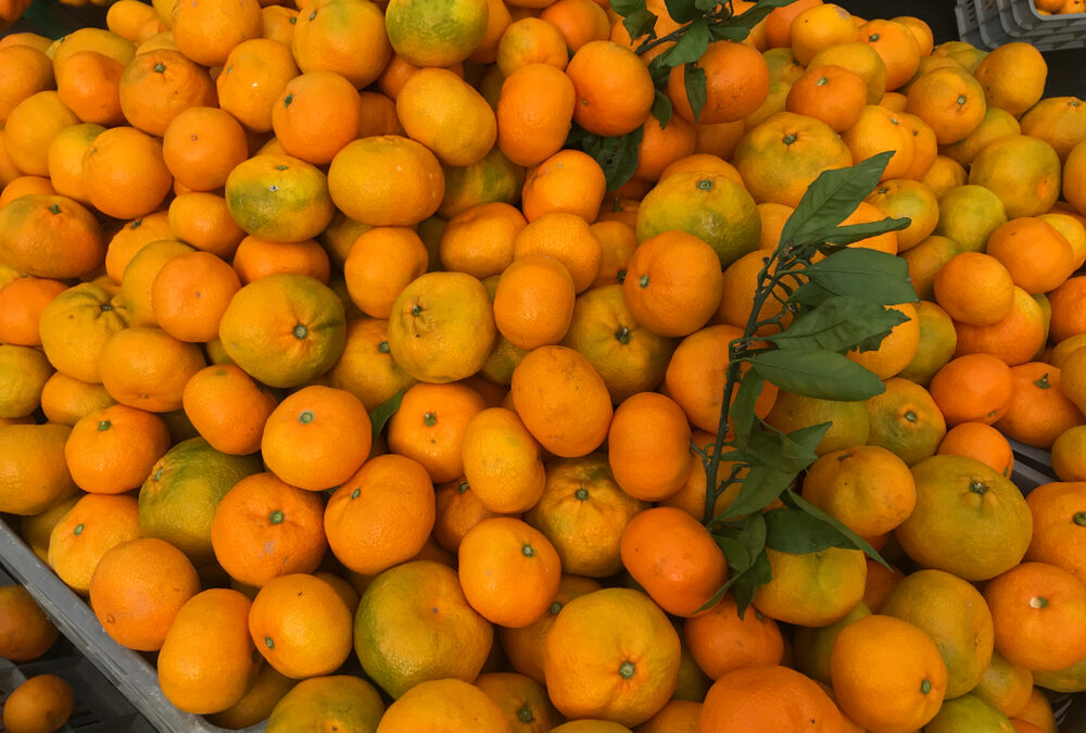 Poziv gradovima i općinama iz Dubrovačko-neretvanske županije: Omogućite neretvanskim proizvođačima besplatan plasman i prodaju mandarina